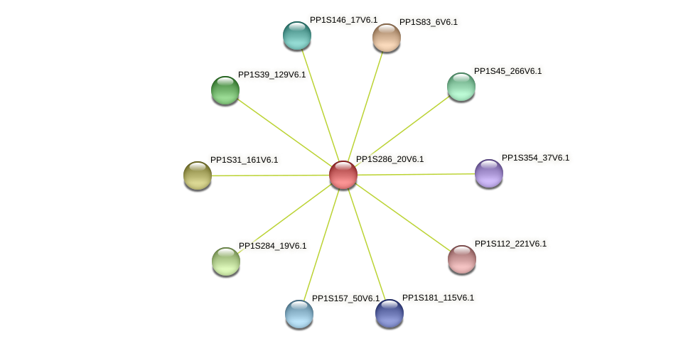 PP1S286_20V6.1 protein (Physcomitrella patens) - STRING interaction network