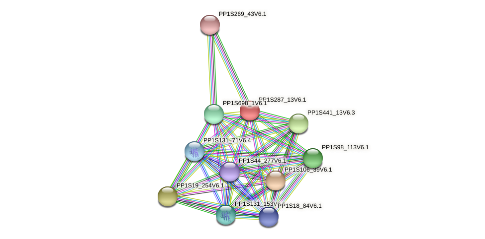PP1S287_13V6.1 protein (Physcomitrella patens) - STRING interaction network