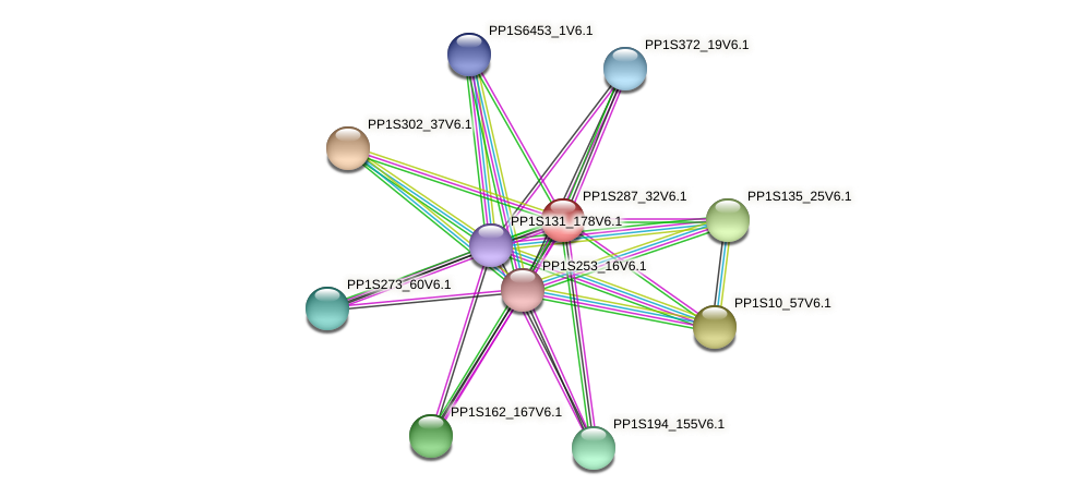 PP1S287_32V6.1 protein (Physcomitrella patens) - STRING interaction network