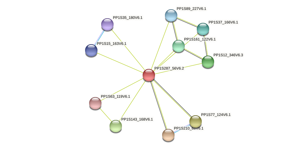 PP1S287_56V6.2 protein (Physcomitrella patens) - STRING interaction network