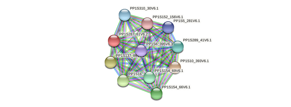 PP1S287_61V6.2 protein (Physcomitrella patens) - STRING interaction network