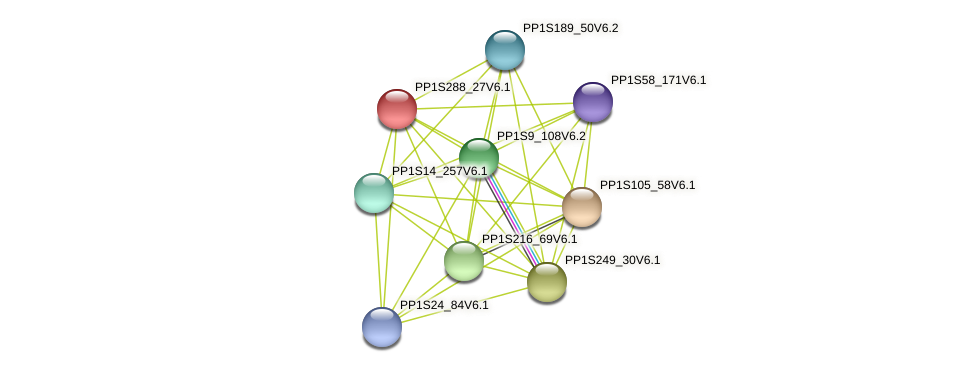 PP1S288_27V6.1 protein (Physcomitrella patens) - STRING interaction network