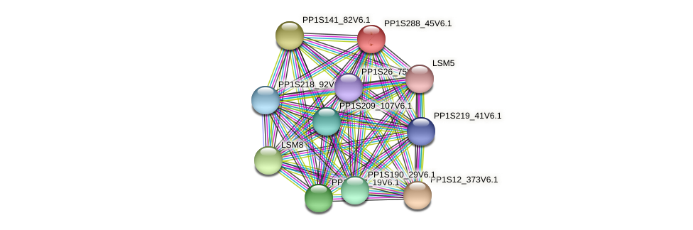 PP1S288_45V6.1 protein (Physcomitrella patens) - STRING interaction network
