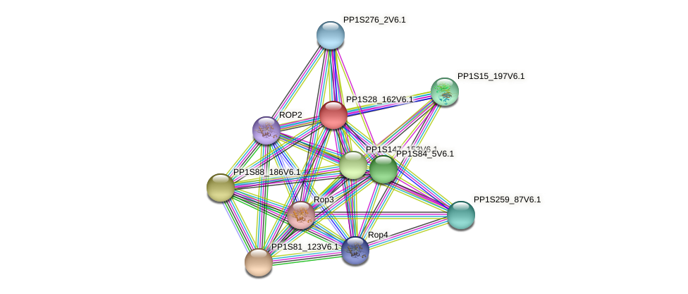 GPB2 protein (Physcomitrella patens) - STRING interaction network