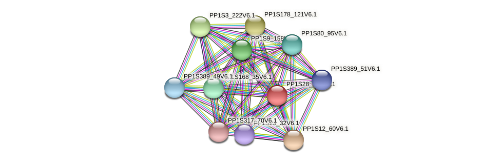 PP1S28_170V6.1 protein (Physcomitrella patens) - STRING interaction network