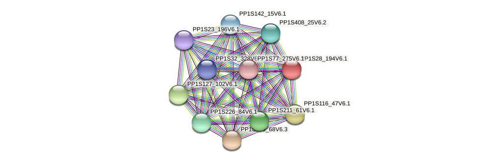 PP1S28_194V6.1 protein (Physcomitrella patens) - STRING interaction network