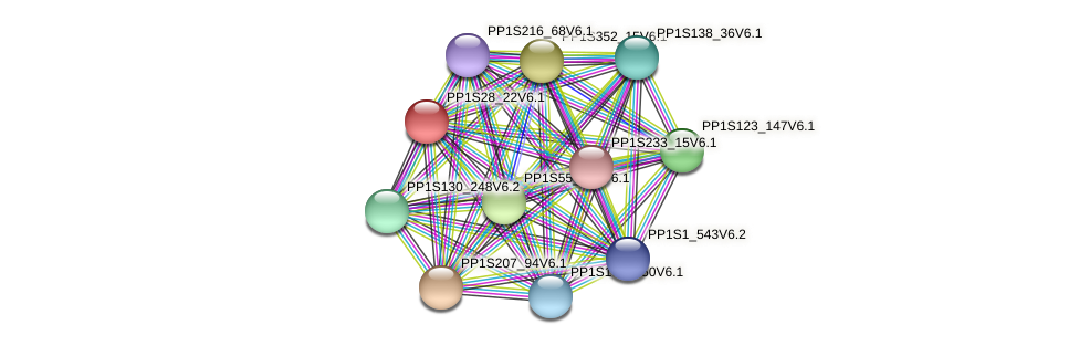 PP1S28_22V6.1 protein (Physcomitrella patens) - STRING interaction network