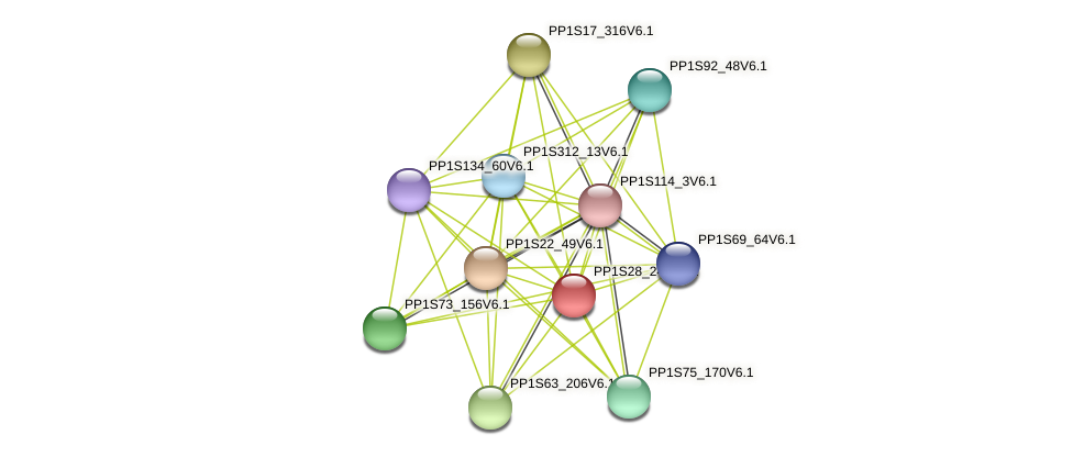 PP1S28_247V6.1 protein (Physcomitrella patens) - STRING interaction network