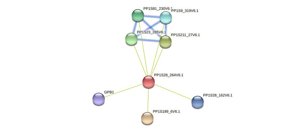 PP1S28_264V6.1 protein (Physcomitrella patens) - STRING interaction network