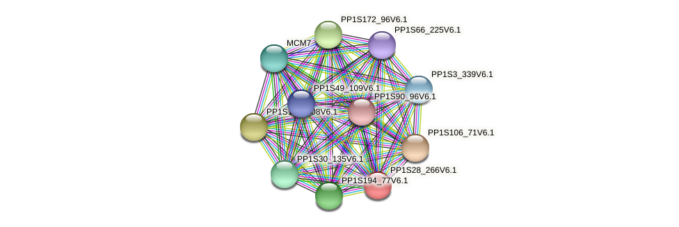 PP1S28_266V6.1 protein (Physcomitrella patens) - STRING interaction network