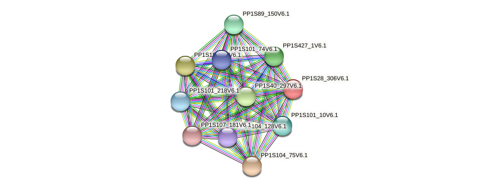 PP1S28_306V6.1 protein (Physcomitrella patens) - STRING interaction network