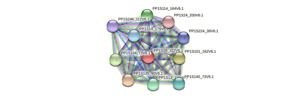 PP1S28_322V6.1 protein (Physcomitrella patens) - STRING interaction network