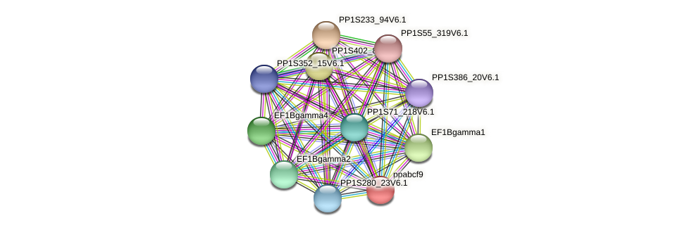ppabcf9 protein (Physcomitrella patens) - STRING interaction network