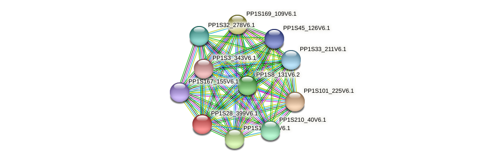 PP1S28_399V6.1 protein (Physcomitrella patens) - STRING interaction network