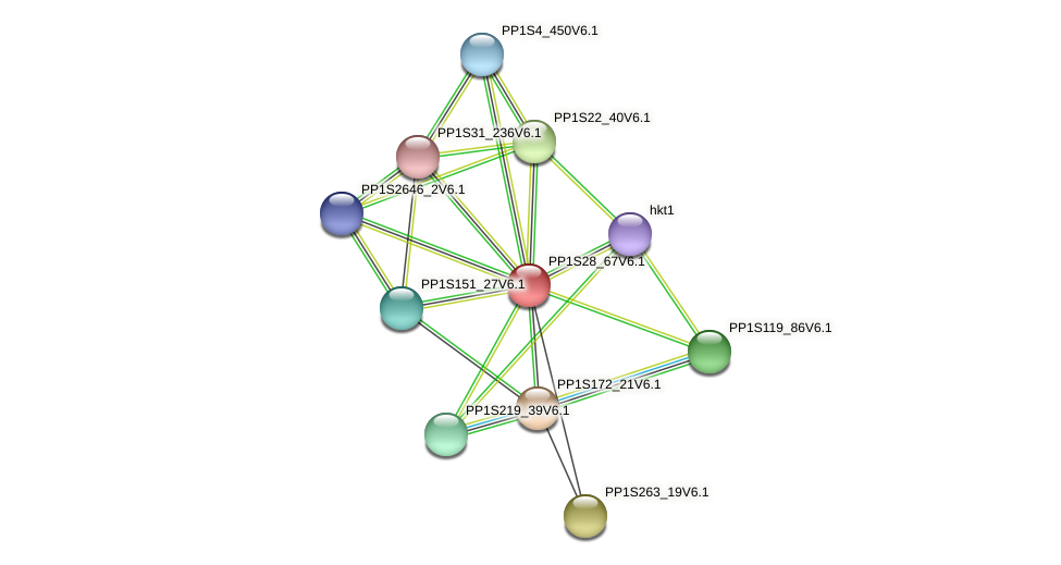 PP1S28_67V6.1 protein (Physcomitrella patens) - STRING interaction network