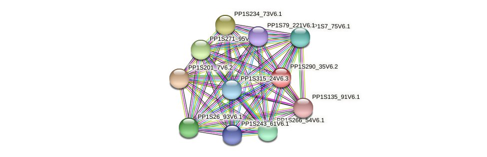 PP1S290_35V6.1 protein (Physcomitrella patens) - STRING interaction network