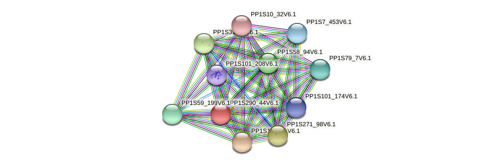 PP1S290_44V6.1 protein (Physcomitrella patens) - STRING interaction network