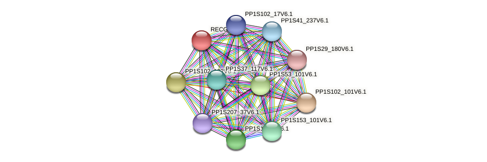 PP1S290_9V6.1 protein (Physcomitrella patens) - STRING interaction network