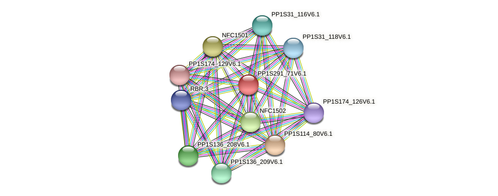 PP1S291_71V6.1 protein (Physcomitrella patens) - STRING interaction network
