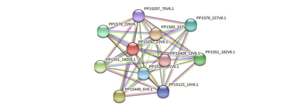 PP1S292_13V6.1 protein (Physcomitrella patens) - STRING interaction network