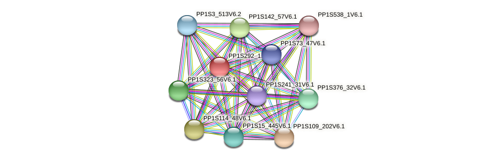 PP1S292_15V6.1 protein (Physcomitrella patens) - STRING interaction network