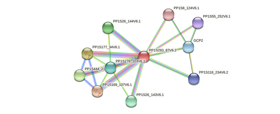 PP1S293_87V6.1 protein (Physcomitrella patens) - STRING interaction network