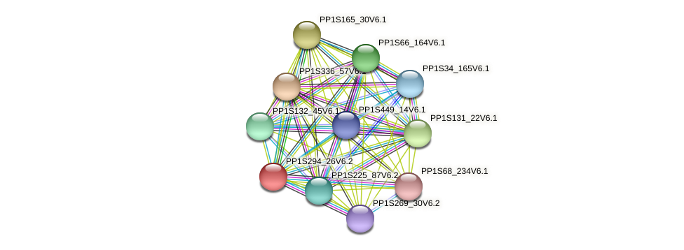 PP1S294_26V6.1 protein (Physcomitrella patens) - STRING interaction network
