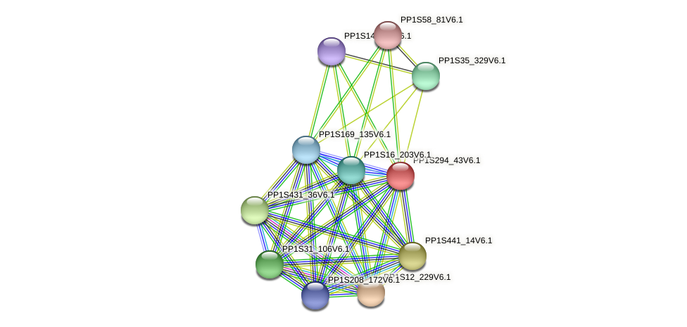 PP1S294_43V6.1 protein (Physcomitrella patens) - STRING interaction network