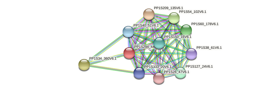 PP1S294_44V6.1 protein (Physcomitrella patens) - STRING interaction network