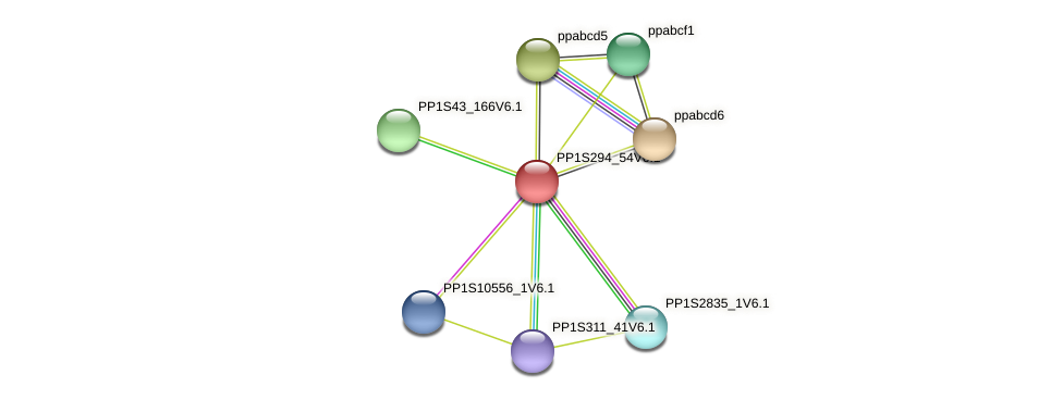 PP1S294_54V6.1 protein (Physcomitrella patens) - STRING interaction network
