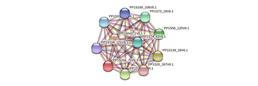 PP1S294_75V6.1 protein (Physcomitrella patens) - STRING interaction network