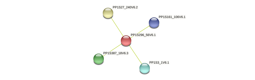 PP1S296_56V6.1 protein (Physcomitrella patens) - STRING interaction network
