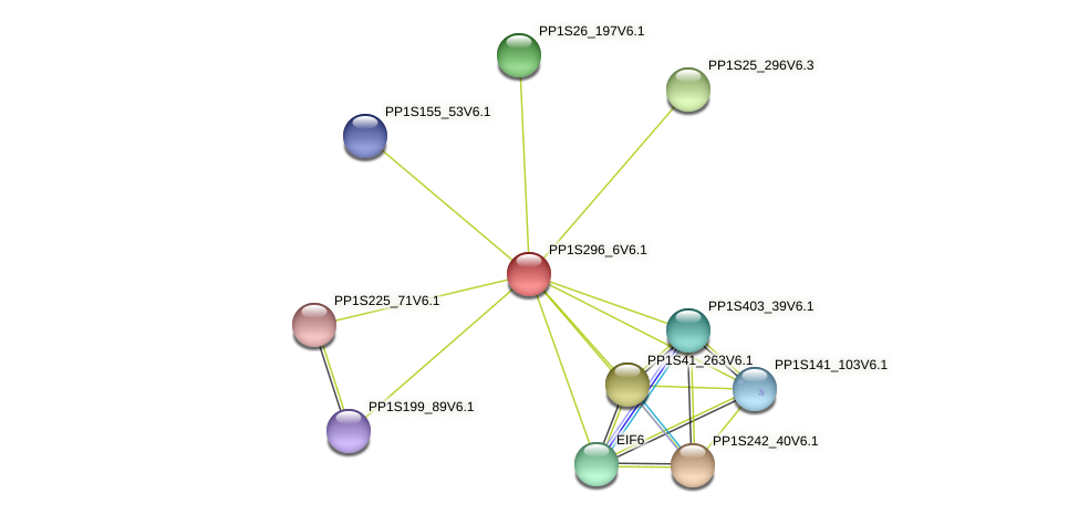 PP1S296_6V6.1 protein (Physcomitrella patens) - STRING interaction network