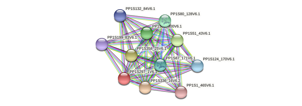 PP1S297_1V6.1 protein (Physcomitrella patens) - STRING interaction network