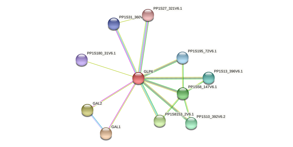 GLP6 protein (Physcomitrella patens) - STRING interaction network