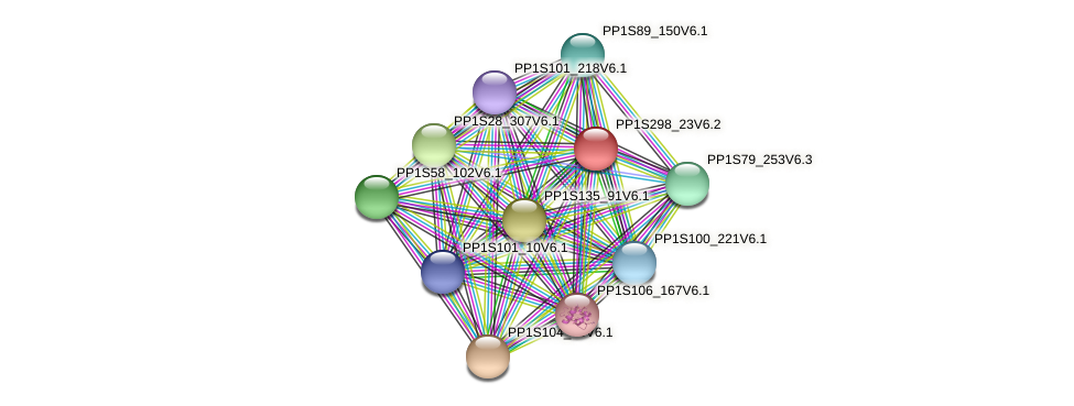 PP1S298_23V6.1 protein (Physcomitrella patens) - STRING interaction network
