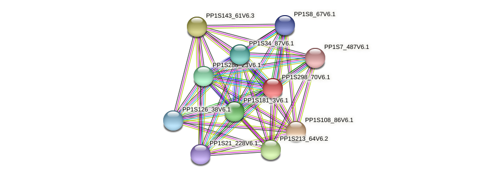 PP1S298_70V6.1 protein (Physcomitrella patens) - STRING interaction network