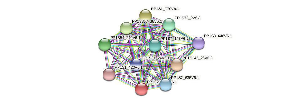PP1S2991_1V6.1 protein (Physcomitrella patens) - STRING interaction network