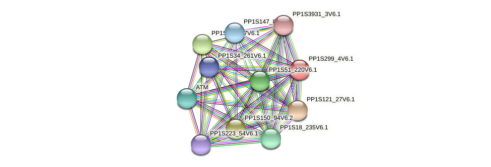 PP1S299_4V6.1 protein (Physcomitrella patens) - STRING interaction network