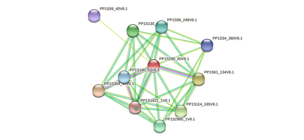 PP1S299_60V6.1 protein (Physcomitrella patens) - STRING interaction network