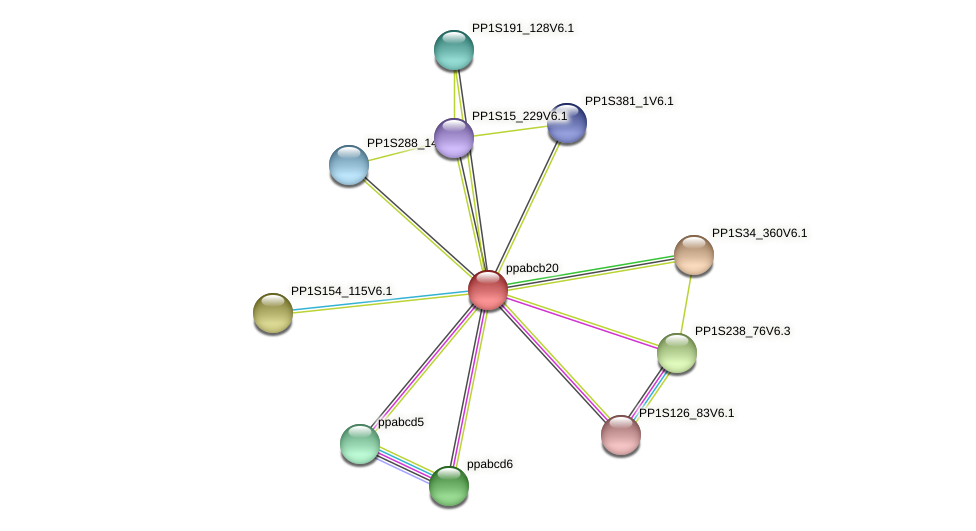 ppabcb20 protein (Physcomitrella patens) - STRING interaction network