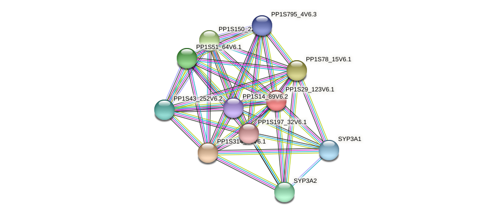 PP1S29_123V6.1 protein (Physcomitrella patens) - STRING interaction network