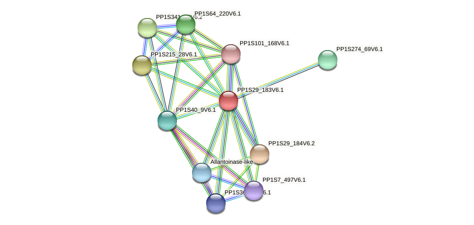 PP1S29_183V6.1 protein (Physcomitrella patens) - STRING interaction network