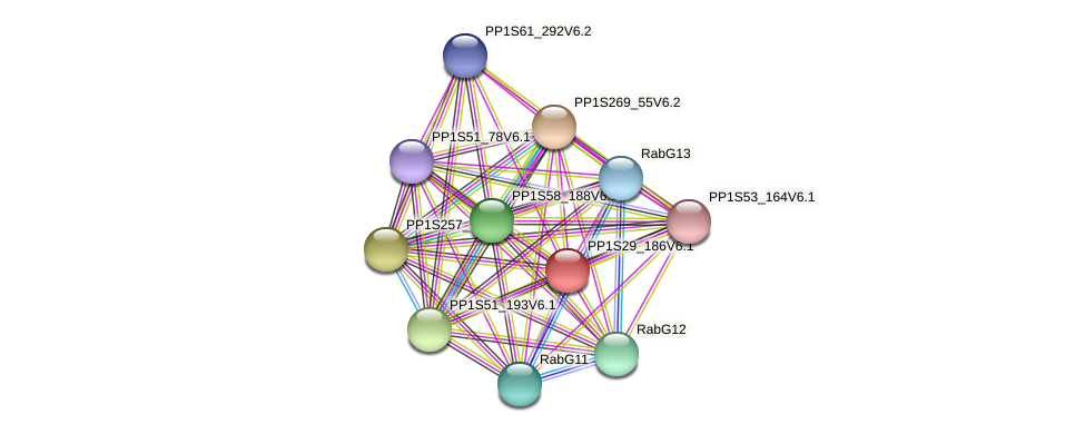 PP1S29_186V6.1 protein (Physcomitrella patens) - STRING interaction network