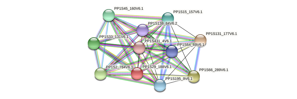 PP1S29_188V6.1 protein (Physcomitrella patens) - STRING interaction network