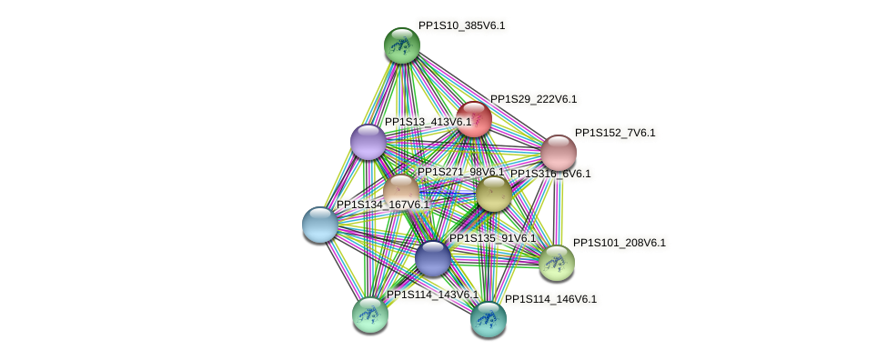 PP1S29_222V6.1 protein (Physcomitrella patens) - STRING interaction network