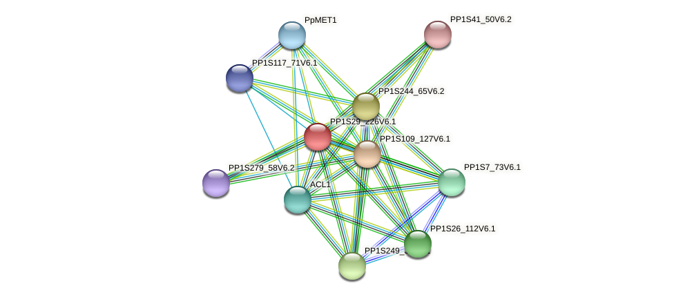 PP1S29_226V6.1 protein (Physcomitrella patens) - STRING interaction network