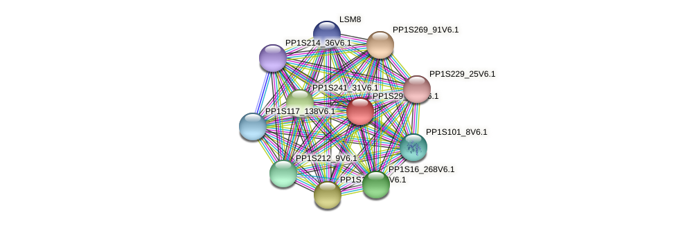 PP1S29_244V6.1 protein (Physcomitrella patens) - STRING interaction network