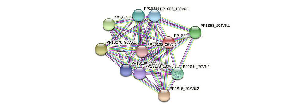PP1S29_251V6.1 protein (Physcomitrella patens) - STRING interaction network