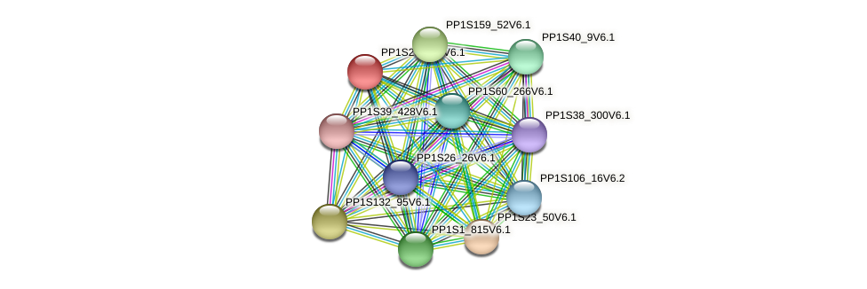PP1S29_311V6.1 protein (Physcomitrella patens) - STRING interaction network